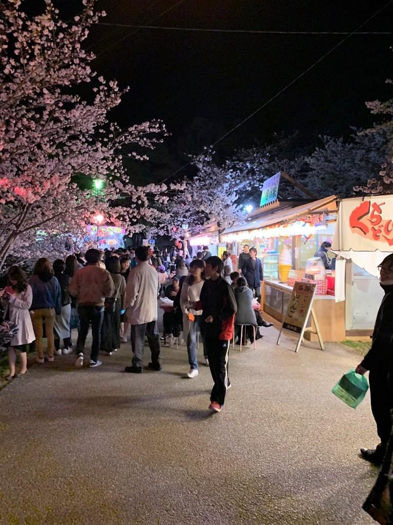 三重県津市 桜の名所 偕楽公園 夜店の集まり 夜桜見物 お花見 建築家 アポア