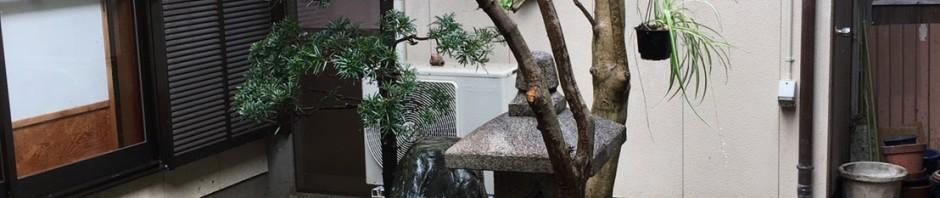 三重県津市 リフォーム相談 中庭のお手入れ 庭木の剪定 職人の丁寧な仕事