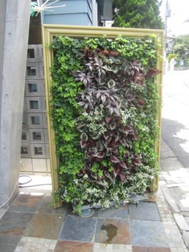 アクセントになる壁面緑化