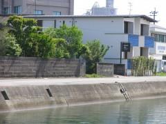 外観 海 見える 近い 旅館 建築家 竹中 アシュ