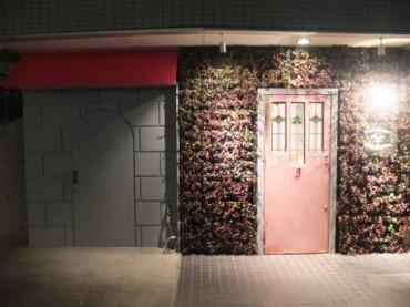ライトアップされた壁面緑化とステンドグラスのピンクのドア