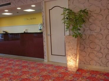 観葉植物 バリライト 高揚社 ホテル